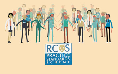 *RCVS Small Animal Hospital Accreditation*