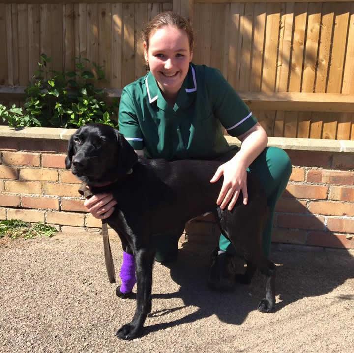 Leanne nurse at Bicester Vets