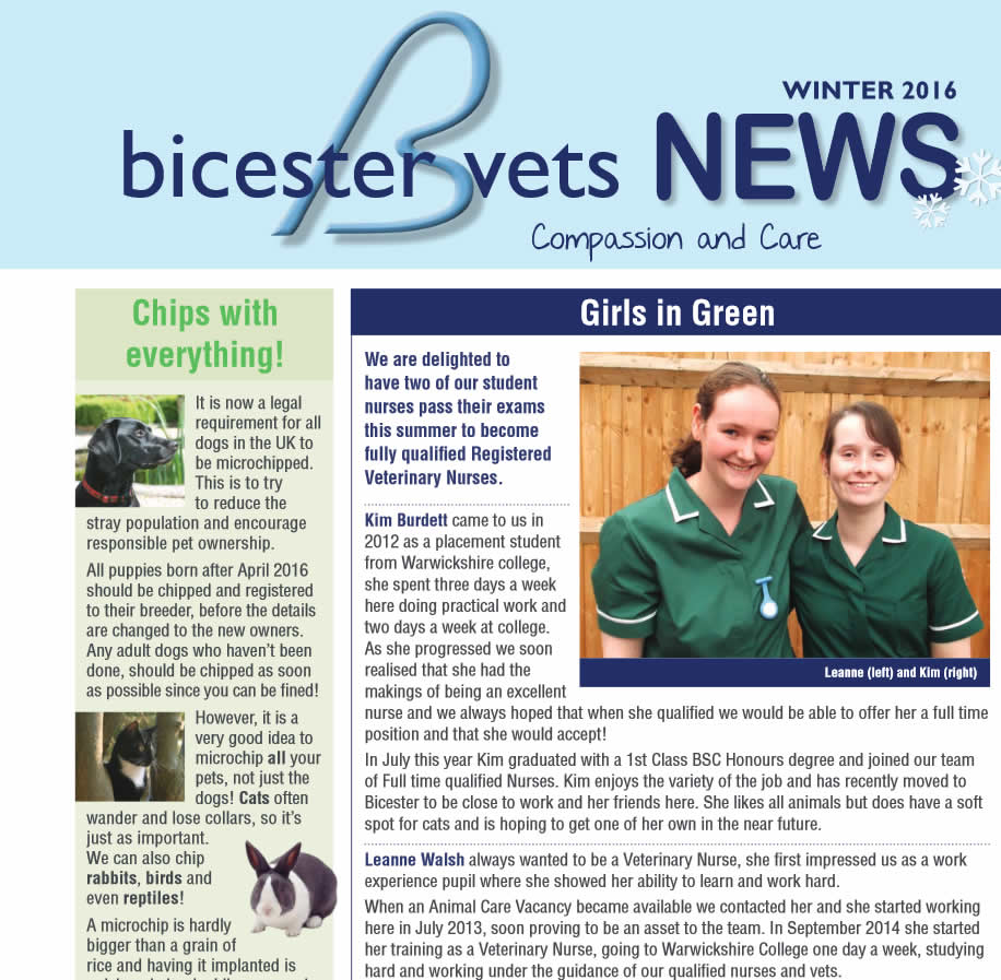 Bicester Vets Winter newsletter