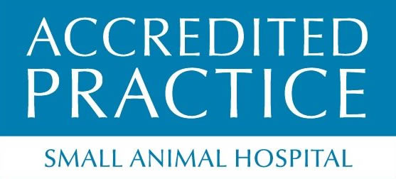 RCVS accredited small animal hospital