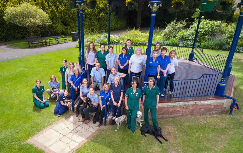Staff and dogs at Bicester Vets