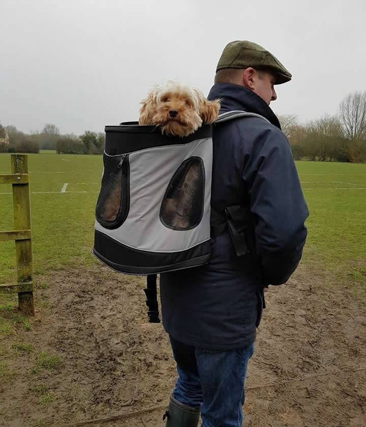 Minnie the dog going for a 'walk' and atatched to back of owner on Langford Fields Bicester