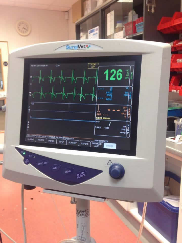ecg machine vet in Bicester