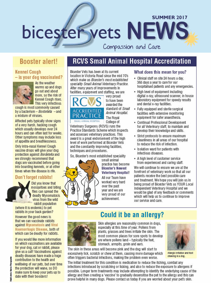 Summer Newsletter Bicester vet