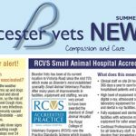 Summer Newsletter Bicester vets