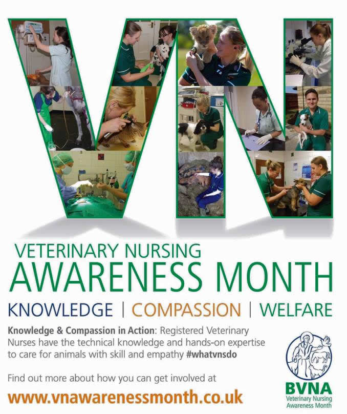 Vet Nurse Awarneness month
