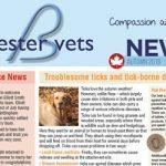 newsletter Bicester vets