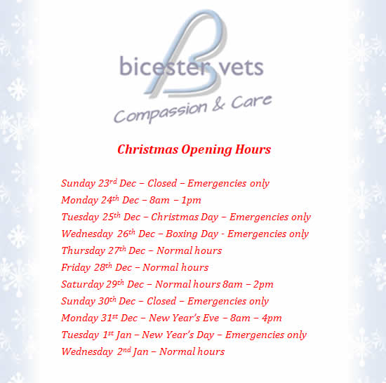 Christmas opening hours at Bicester vets