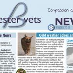 bicester winter newsletter