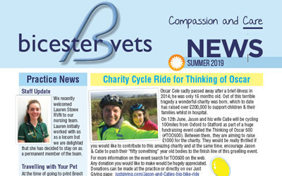 Our Summer Newsletter