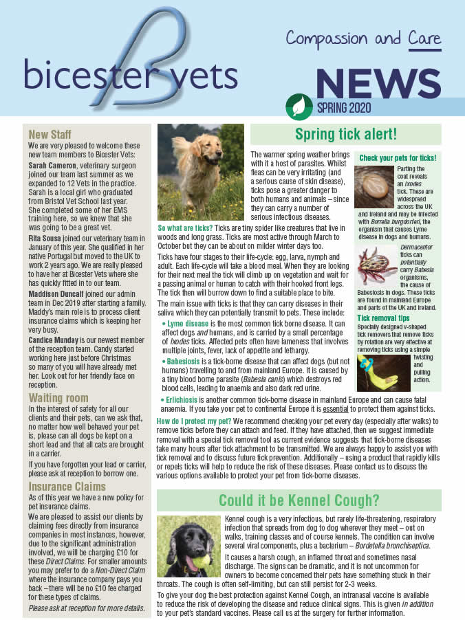 Spring newsletter at Bicester vets